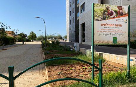 העירייה מוסרת חלקות אדמה ציבוריות לאימוץ התושבים
